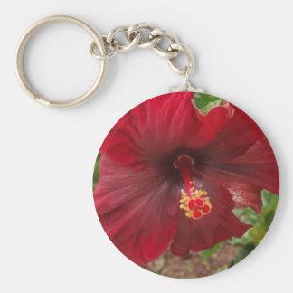 red hawaii hibiscus plant basic round button keychain