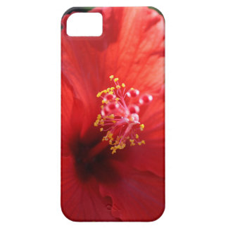 Red Hawaii Plumera iPhone 5 Cover