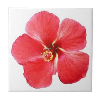 Red Hawaiian Hibiscus Flower Tile