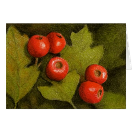 Red Hawthorn Berries in Color Pencil: Art Card