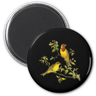 Red-headed Bunting 2 Inch Round Magnet
