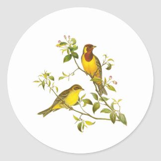 Red-headed Bunting Classic Round Sticker