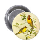 Red-headed Bunting Emberiza bruniceps 2 Inch Round Button