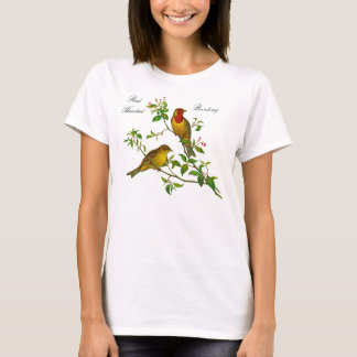Red Headed Bunting vintage illustration by Gould T-Shirt
