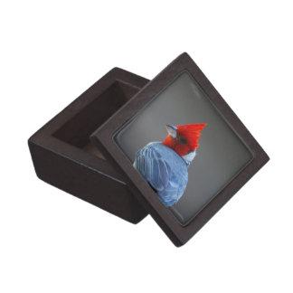 Red Headed Cardinal Bird Premium Gift Box