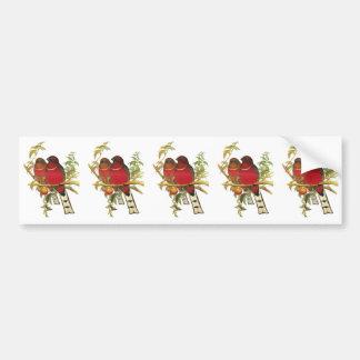 Red-headed Trogon Bumper Sticker