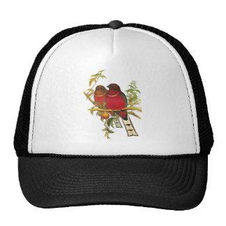 Red-headed Trogon Trucker Hat
