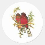 Red-headed Trogon Sticker