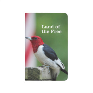 Red-headed Woodpecker 2 Journal