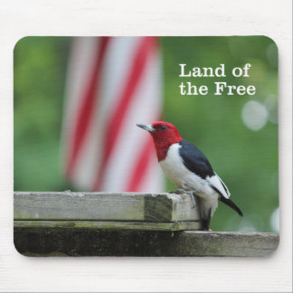 Red-headed Woodpecker 2 Mouse Pad
