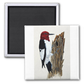 Red-headed woodpecker 2 inch square magnet