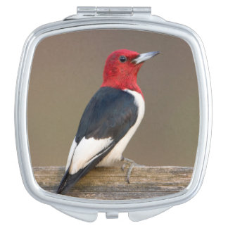 Red-headed Woodpecker on fence Compact Mirror