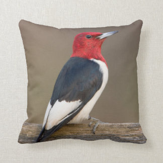 Red-headed Woodpecker on fence Throw Pillow