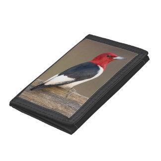 Red-headed Woodpecker on fence Trifold Wallets