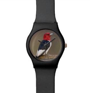 Red-headed Woodpecker on fence Wrist Watch