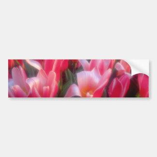 Red Heart delight tulips flowers Bumper Sticker