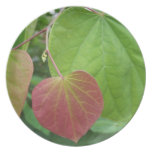 Red Heart Leaf Party Plates