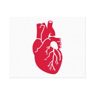 Red heart organ canvas print