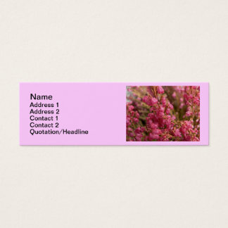 Red Heather flowers Mini Business Card