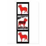 Red Heeler Movie Film Strip Postcards