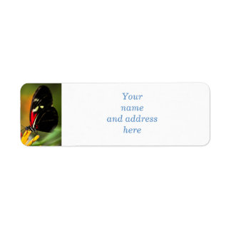 Red heliconius dora butterfly return address label