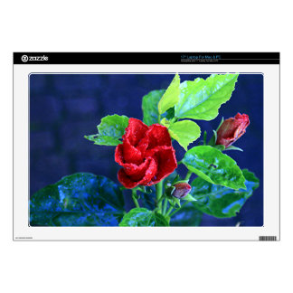 Red hibiscus after rain laptop decal