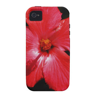 Red Hibiscus Case-Mate iPhone 4 Covers