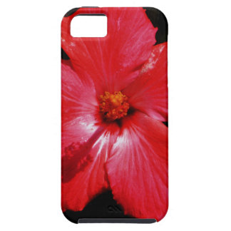 Red Hibiscus iPhone 5 Covers