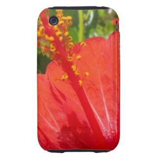 Red Hibiscus iPhone 3 Tough Cover