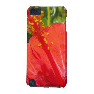 Red Hibiscus iPod Touch (5th Generation) Covers