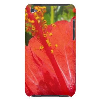 Red Hibiscus Case-Mate iPod Touch Case