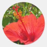 Red Hibiscus Classic Round Sticker