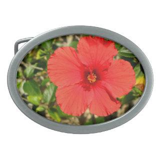 Red Hibiscus Flower Belt Buckle