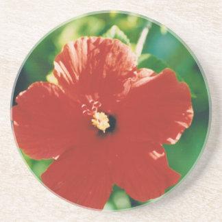 Red Hibiscus Flower Beverage Coasters