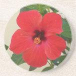 Red Hibiscus Flower Coaster