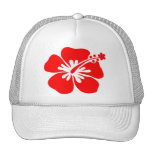 Red hibiscus flower hats