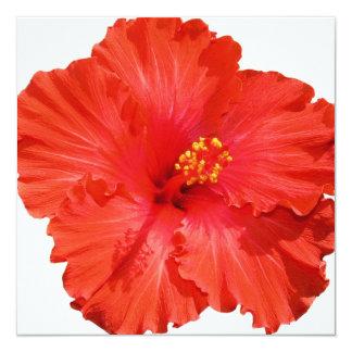 Red Hibiscus Flower Invitations