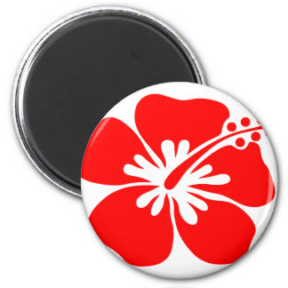 Red hibiscus flower magnet