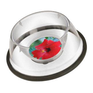 Red Hibiscus Flower Pet Bowl