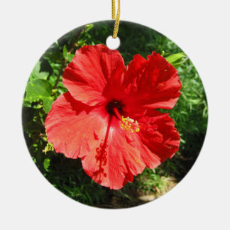 Red Hibiscus Flower Photograph from Hawaii Ceramic Ornament