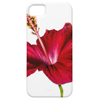 Red Hibiscus Flower Side View iPhone 5 Cover
