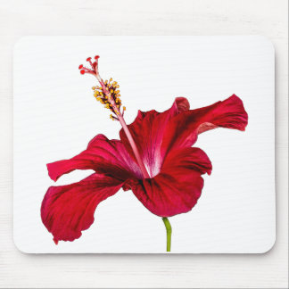 Red Hibiscus Flower Side View Mouse Pad