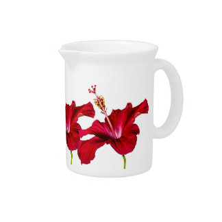 Red Hibiscus Flower Side View Pitchers