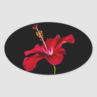 Red Hibiscus Flower Side View Oval Stickers