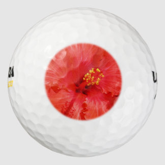 Red Hibiscus Flowers Pack Of Golf Balls