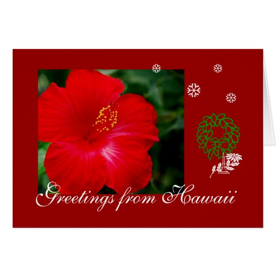 Red Hibiscus, Greetings from Hawaii Card