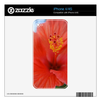Red Hibiscus iPhone 4S Skins