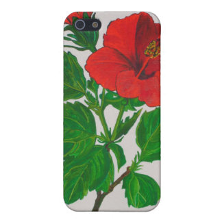 Red Hibiscus iPhone SE/5/5s Cover