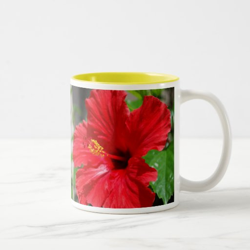 Red Hibiscus Mother's Day Mug