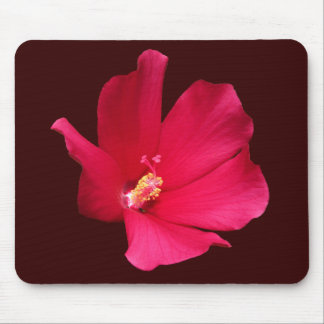 Red Hibiscus ~ mousepad